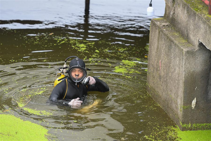 """(防汛抗洪·圖文互動)(4)洞庭""""蛙人"""":在水下10米打響家園保衛戰"""