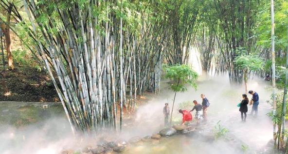 南郊公園竹苑景點新增霧森係統 昨起正式對市民遊客開放