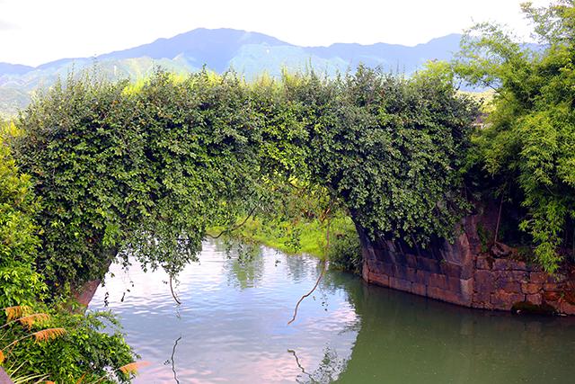 零陵發現明初石拱橋