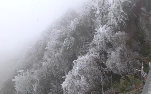 靖州飛山再現霧凇美景