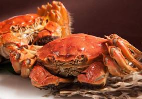 """長沙""""嘗鮮""""螃蟹已登場 每公斤最高過200元"""