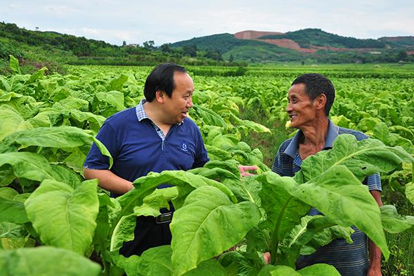廖桂生在田间向烟农了解烟叶种植情况